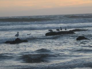 par ici les fotos de bretagne de clau Mar-es-d-equinoxes-024-213e202