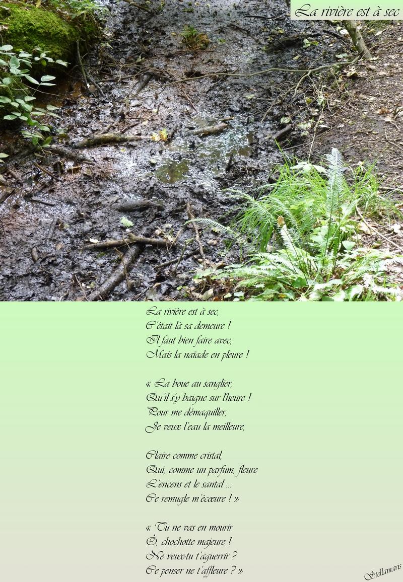 La rivière est à sec / / La rivière est à sec, / C'était là sa demeure ! / Il faut bien faire avec, / Mais la naïade en pleure ! / / « La boue au sanglier, / Qu'il s'y baigne sur l'heure ! / Pour me démaquiller, / Je veux l'eau la meilleure, / / Claire comme cristal, / Qui, comme un parfum, fleure / L'encens et le santal … / Ce remugle m'écœure ! » / / « Tu ne vas en mourir / Ô, chochotte majeure ! / Ne veux-tu t'aguerrir ? / Ce penser ne t'affleure ? » / / Stellamaris