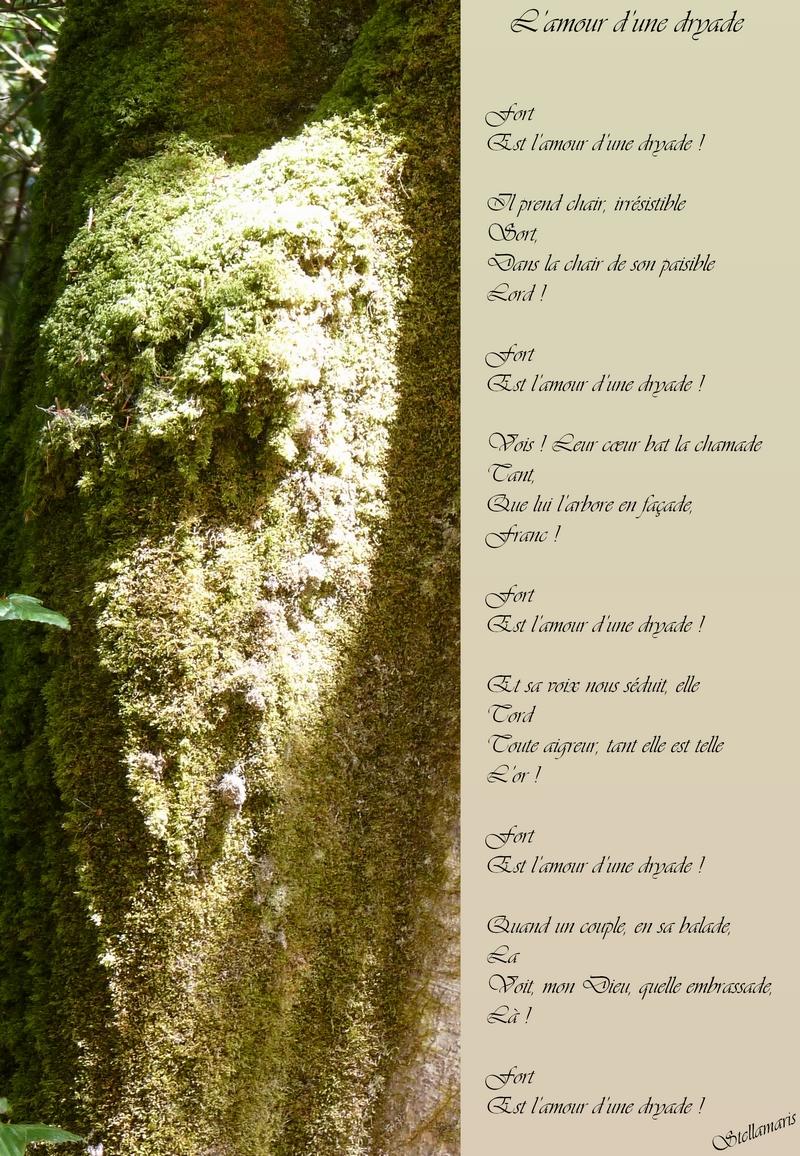 L'amour d'une dryade / / Fort / Est l'amour d'une dryade ! / / Il prend chair, irrésistible / Sort, / Dans la chair de son paisible / Lord ! / / Fort / Est l'amour d'une dryade ! / / Vois ! Leur cœur bat la chamade / Tant, / Que lui l'arbore en façade, / Franc ! / / Fort / Est l'amour d'une dryade ! / / Et sa voix nous séduit, elle / Tord / Toute aigreur, tant elle est telle / L'or ! / / Fort / Est l'amour d'une dryade ! / / Quand un couple, en sa balade, / La / Voit, mon Dieu, quelle embrassade, / Là ! / / Fort / Est l'amour d'une dryade ! / / Stellamaris